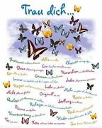 Poster Schmetterling