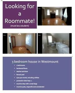 Looking for One Roommate for September 1