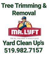 Tree Trimming, Removal & Stump Grinding