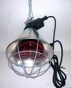 Heat Lamp Poultry Puppies Dog Kittens Piglets Animals 175w Red Bulb Included Ebay