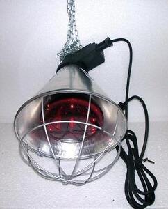 Heat Lamp Pet Supplies Ebay