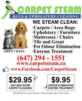 CARPET AND UPHOLSTERY STEAM CLEANING WITH GREEN SOLUTIONS