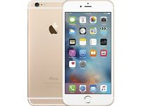 Apple iPhone 6 Plus Mobile year old with box colour gold 16gb great condition must see