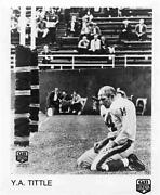 Y.a. Tittle Photo