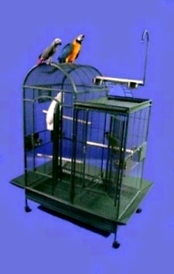 Accepting unwanted parrots
