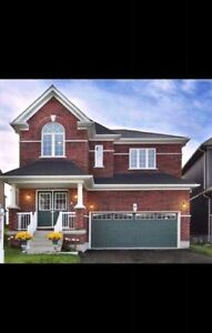 New Goreous 2720 sq 4bedroom house for Rent in North Oshawa.