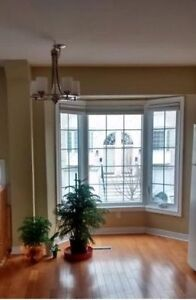 ** Cute Townhouse for Rent in Burlington ** Walkers&Upper Middle