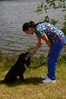 AMI POUR LA VIE: Promenade de chien + évaluation comportement