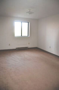 Spacious Apartments in DOWNTOWN London - January 1st!! London Ontario image 4