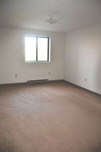 Spacious Apartments in DOWNTOWN London - GET ON OUR WAITLIST!! London Ontario image 4
