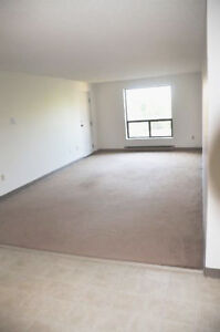 Spacious Apartments in DOWNTOWN London - January 1st!! London Ontario image 5
