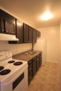 **SPACIOUS FULLY RENOVATED STUDIO APT - ALL INCLUSIVE**