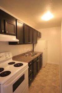 **SPACIOUS FULLY RENOVATED TWO BDRM APT - ALL INCLUSIVE**