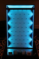 Plinko board with LED lights- for Rent