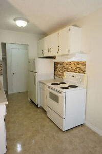 Renovated, large 3 bedroom apartment near NAIT