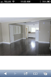 Camrose house for rent