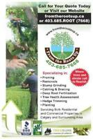 LAWN FERTILIZATION AND COMPLETE WEED CONTROL!!