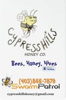 Bee rescue /swarm control Cypress Hills Honey Co.