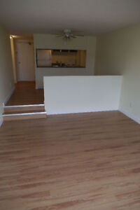 1 Bedroom - Oliver Area, Right Off Jasper - All Included