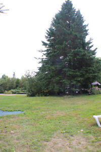 20 Acres with Spacious Family Home! Peterborough Peterborough Area image 9