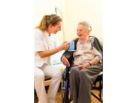 ADULT DOMESTIC CARE AGENCY BUSINESS REF 145016