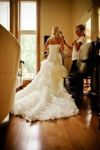 International Wedding Photographer - Worldclass - 50% Off Kitchener / Waterloo Kitchener Area image 4