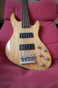 De Armond 5 string bass
