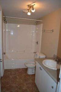 Spacieux,  appartement, 2 chambres Gatineau Ottawa / Gatineau Area image 4