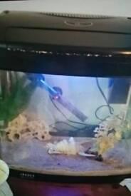48l fish tank