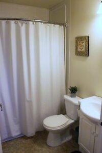 Modern 1 Bedroom Condo ~ Furnished ~ Close to HSC, MUN St. John's Newfoundland image 5