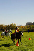 Equine Experience - Mounted Games