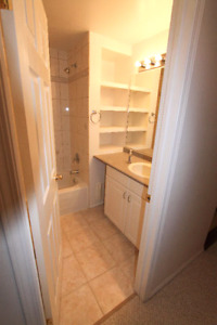 Location, Location - Private Basement Suite for Rent