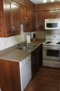 Modern 1 Bedroom Condo ~ Furnished ~ Close to HSC, MUN St. John's Newfoundland image 4