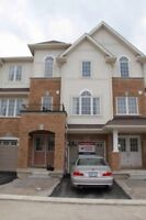 Exquisite New Home - Ready October 1st!