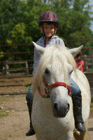 Summer Riding Camp - Conestogo River Horseback Adventures