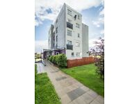 Cheap 1 bed flat for sale in greenisland!! Great investment