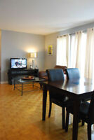 GRIFFINTOWN 41/2 , fully furnished condo to rent