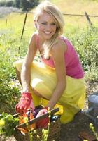 Landscape Gardeners for Hire Grass Cut Lawn Care Garden Mulch