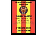 Looking for a football player to join our team