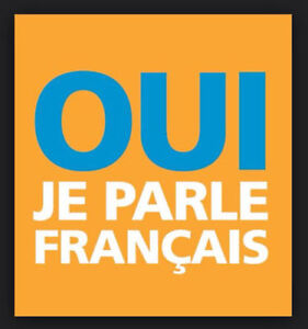 Learn French with a professional tutor