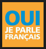 Professional French teacher - 20$ per hour