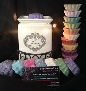 SOY CANDLES & MELTS AT THE FIRE N WATER FESTIVALR