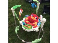 Forest Jumperoo Baby Bouncer