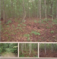 2.5 Acres for Sale North of Haliburton!