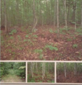 REDUCED! 2.5 Acres For Sale!