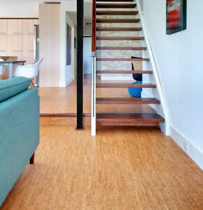 Come Find The Best Prices for Silver Birch Floating floor