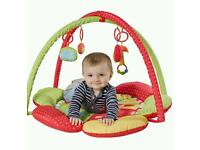 Baby play mat gym