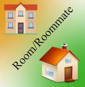 Indian Roommate/ Room Wanted in Millwoods.