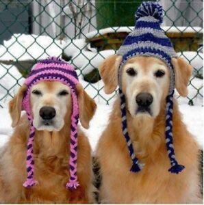 Dog Hat. Large & Xlarge