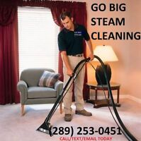 WINTER SPECIAL ONLY $79 CARPET & FURNITURE CLEANING GO BIG STEAM